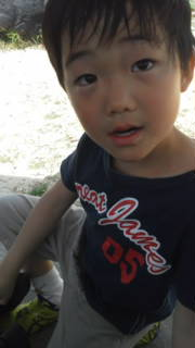 南紀白浜 ナギサビール 少年野球